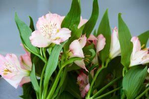 FlowerArranging 008