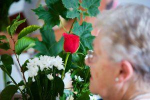 FlowerArranging 033