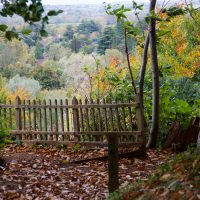 Cliveden Walk_20Oct2017 009