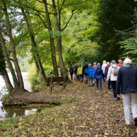 Cliveden Walk_20Oct2017 022