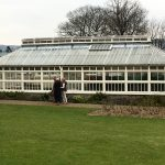 Greenhouse in the Commissionaire's garden