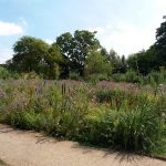 WaterperryGardens_GardenVisits 1