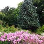 WaterperryGardens_GardenVisits 22