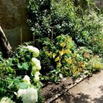 WaterperryGardens_GardenVisits 4