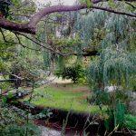 GardenVisit_DM_WGNT_14
