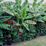 GardenVisit_DM_WGNT_30