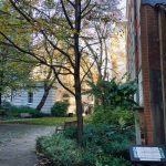 U3A_LondonWalk_Clerkenwell_November2018 24