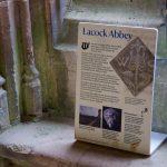 Lacock_July2019_1024x 45
